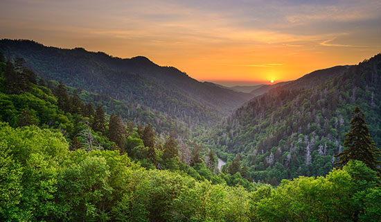 home-smoky-mountains